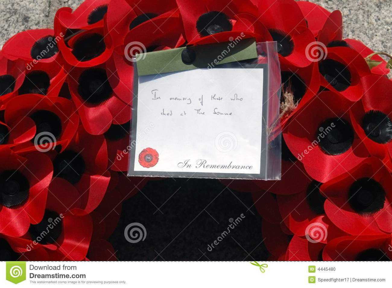 remembrance day poppy wreath stock photo image 4445480