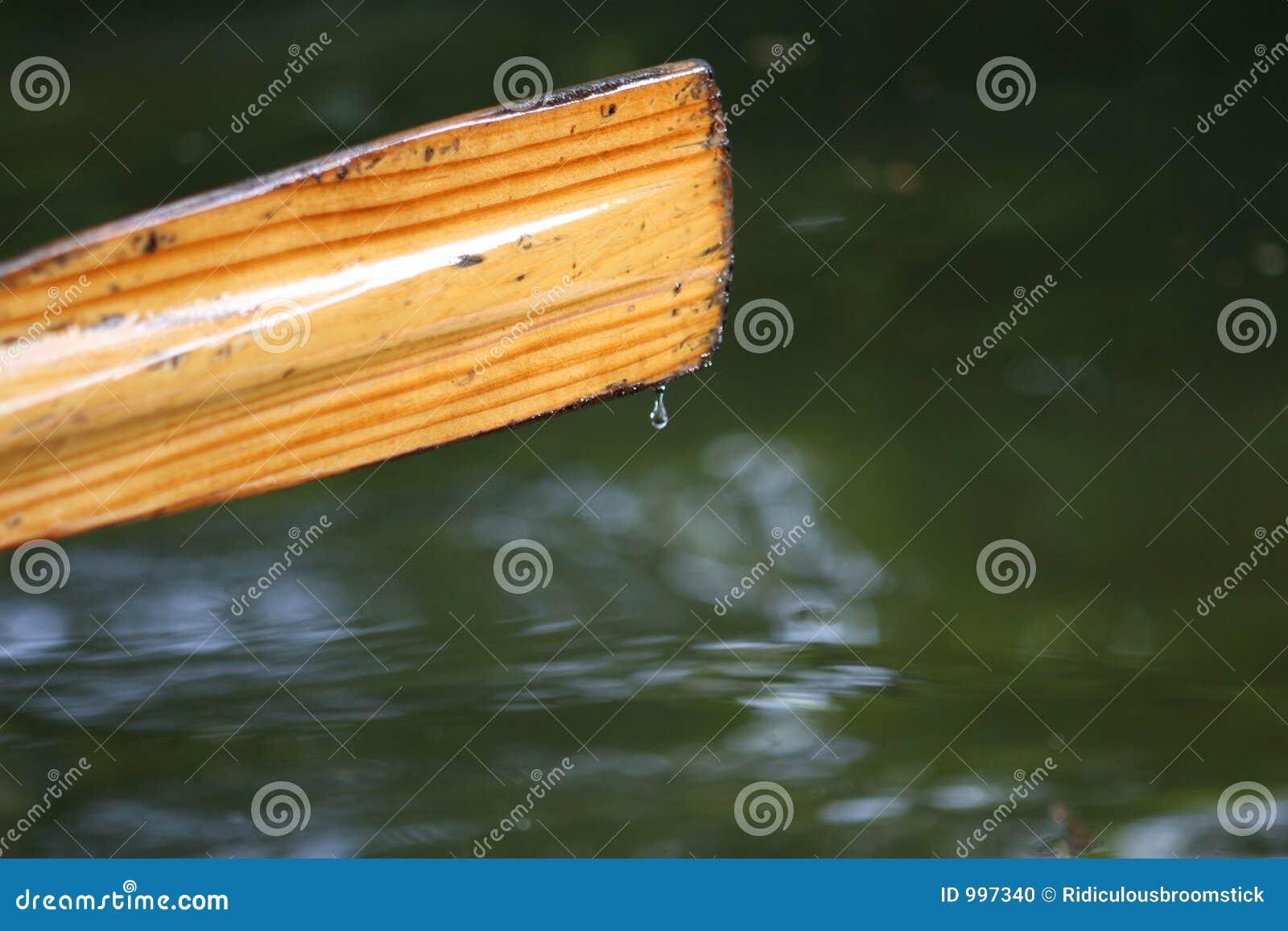 Remo della barca di rematura