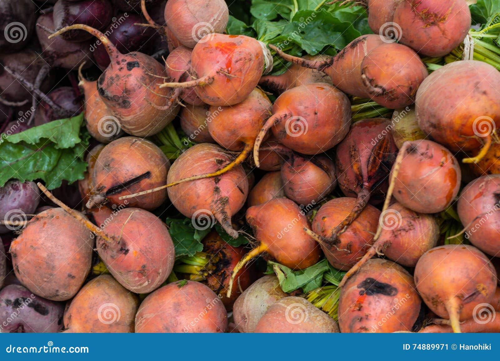 Remolacha, remolacha roja - primer de la verdura cruda