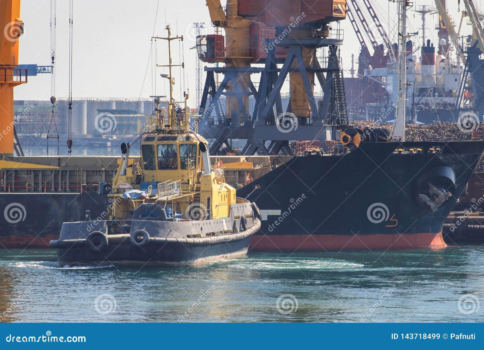 Remolcador en el arco del buque de carga, ayudando al buque para maniobrar