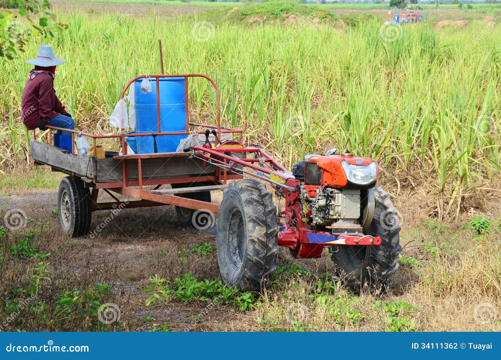 Remolque del tractor y del remolque en el campo de la caña de azúcar
