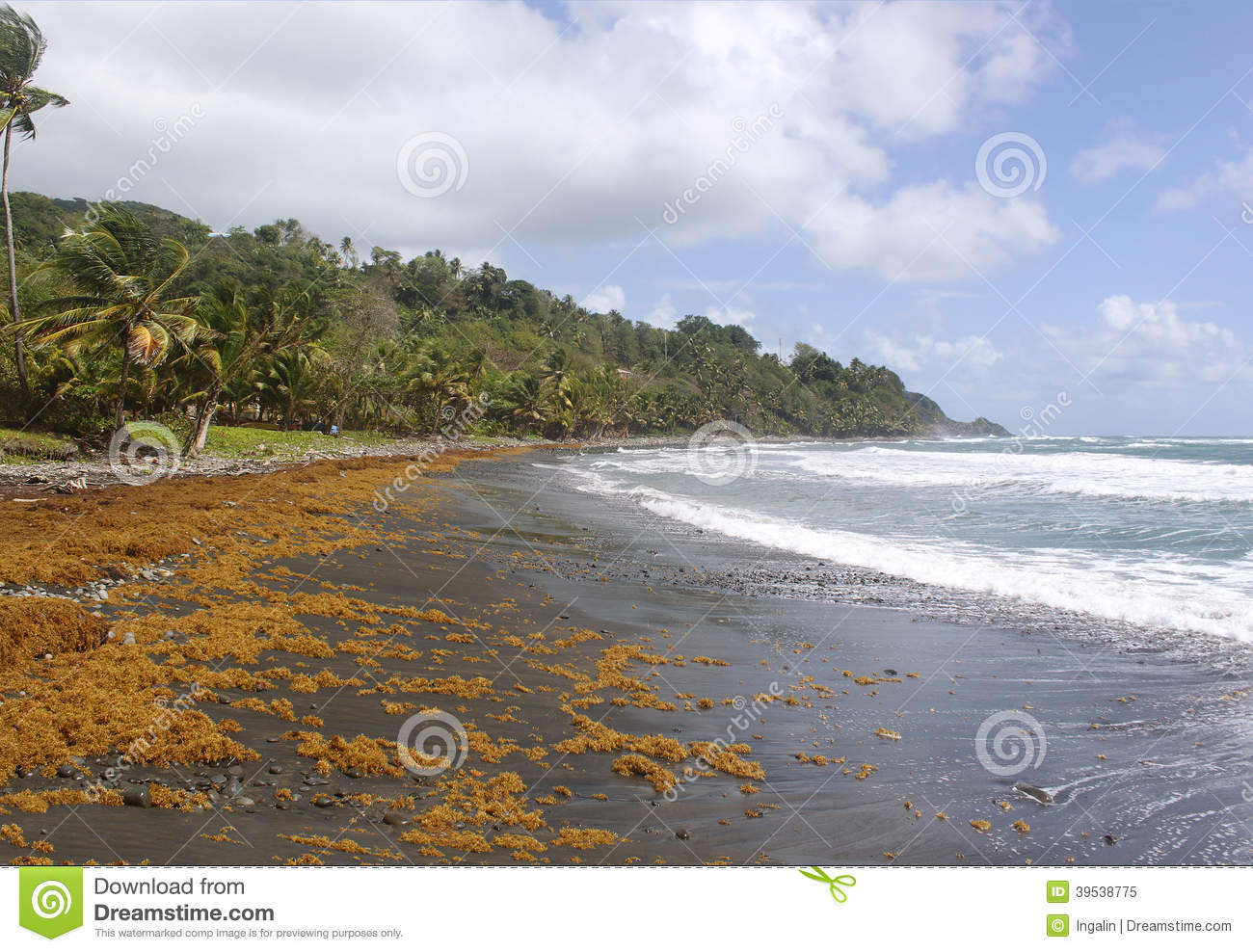 Remote black sand beach dominica caribbean islands stock for Black sand beach caribbean