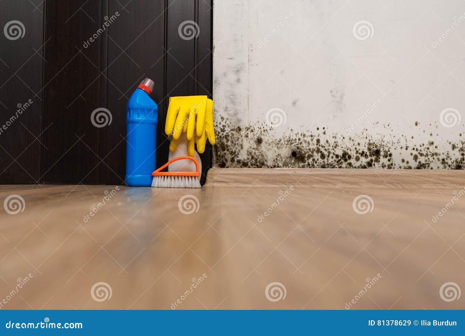 Removing mold allergen