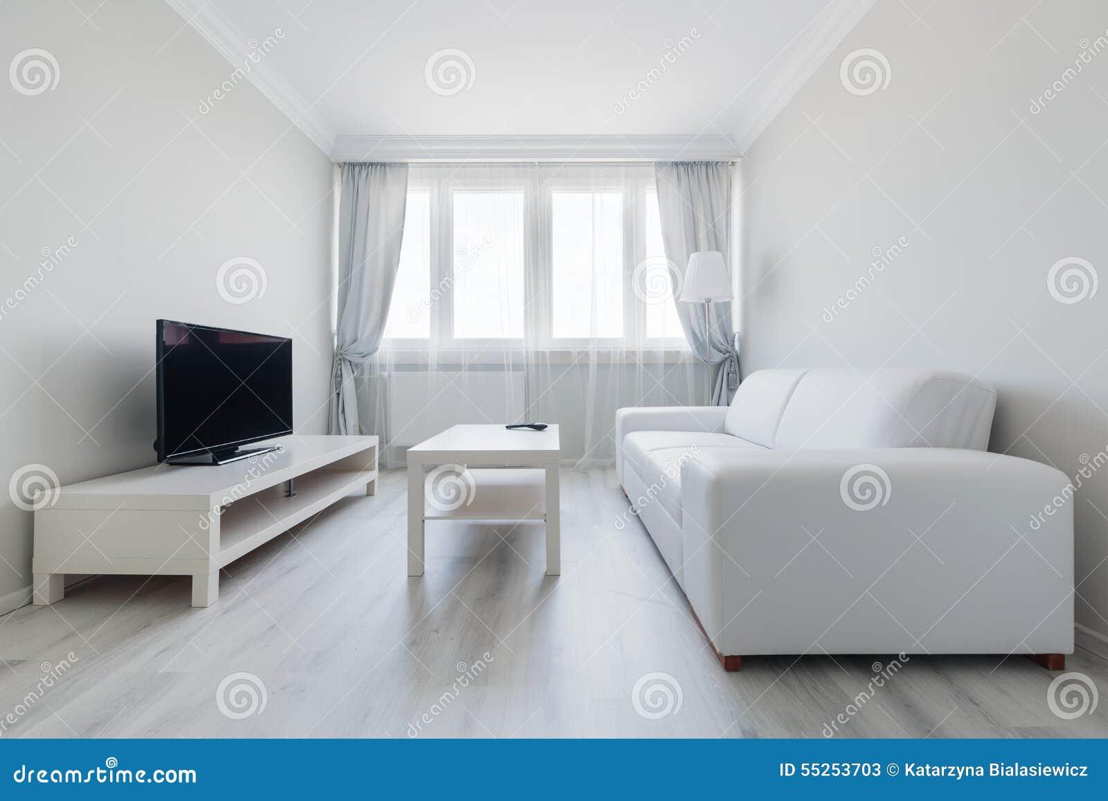 Ren och klar vardagsrum