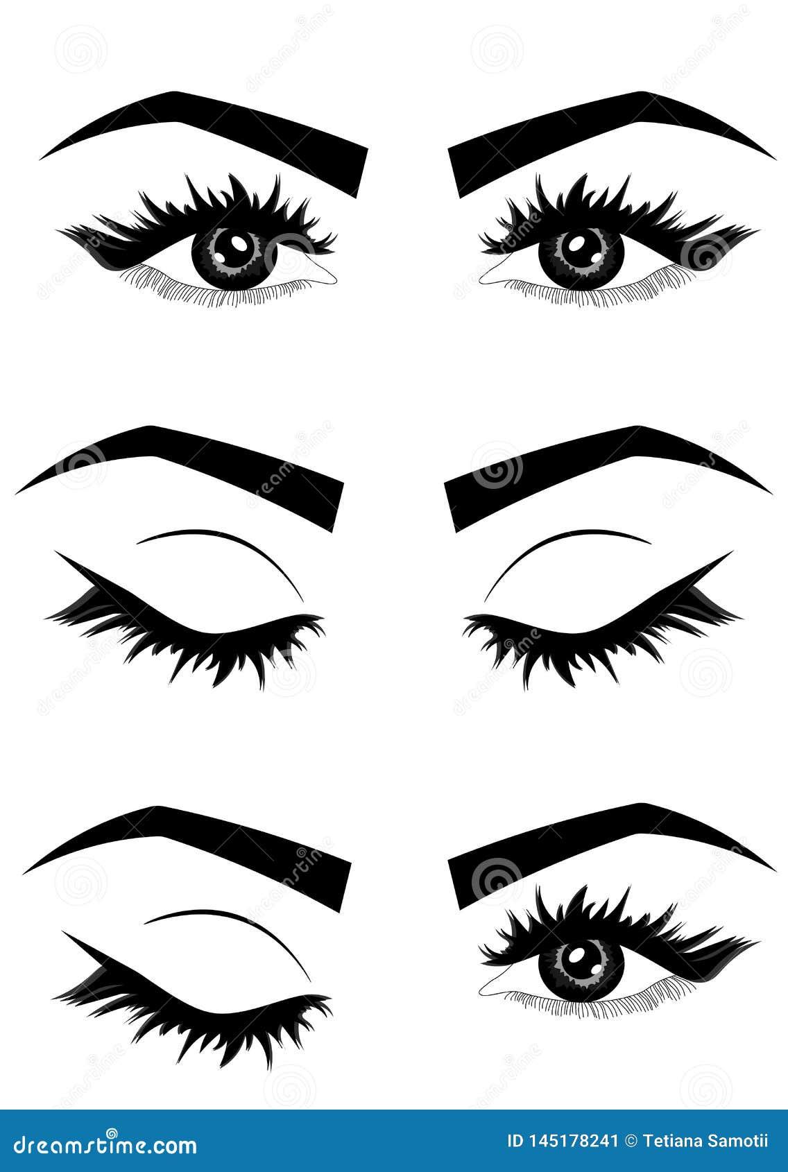 Rengöringsdukillustration av kvinnas sexiga lyxiga öga med ögonbryn och fulla snärtar typografi