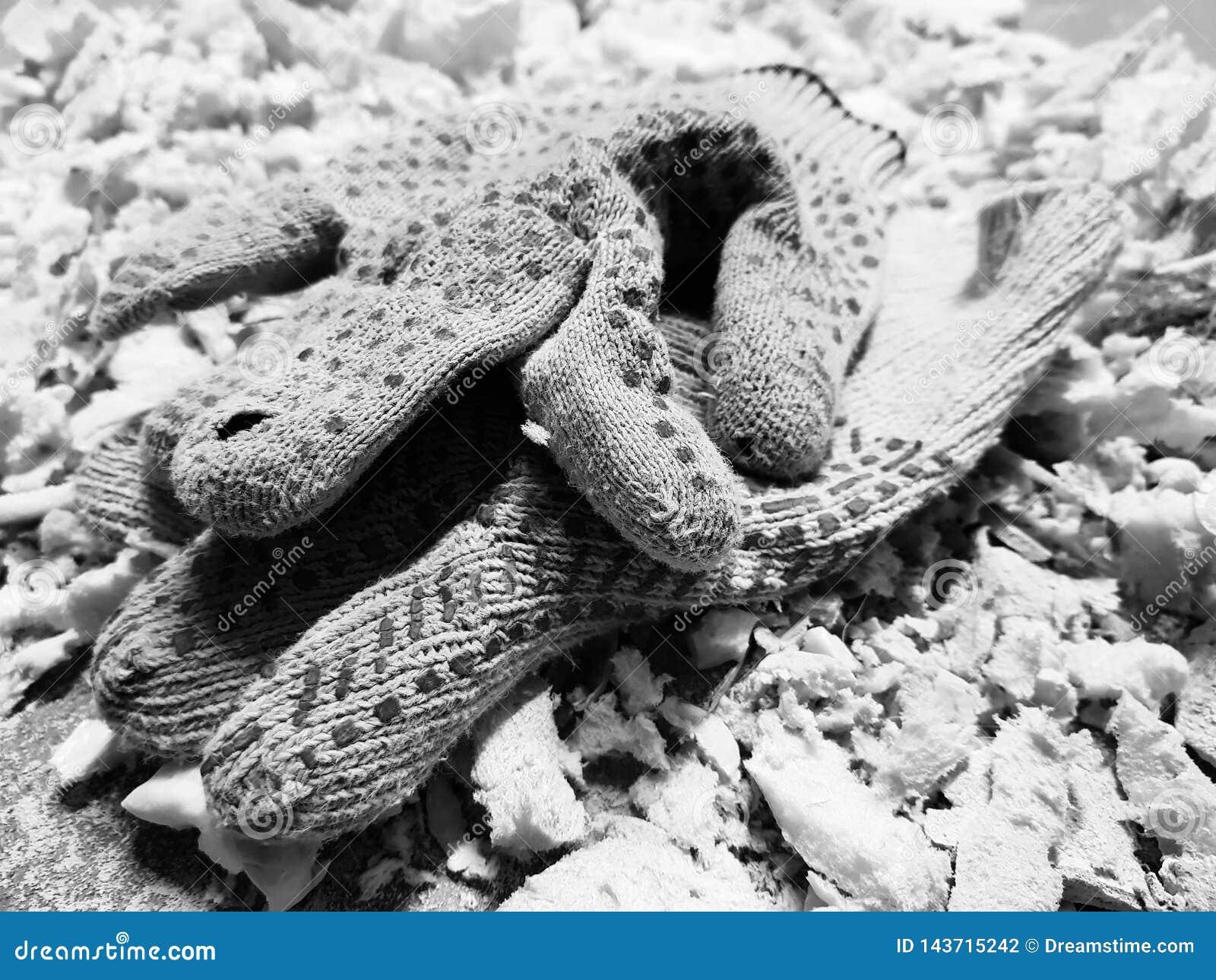 Reparatie - in orde makende schuim en bouwhandschoenen op de betegelde vloer