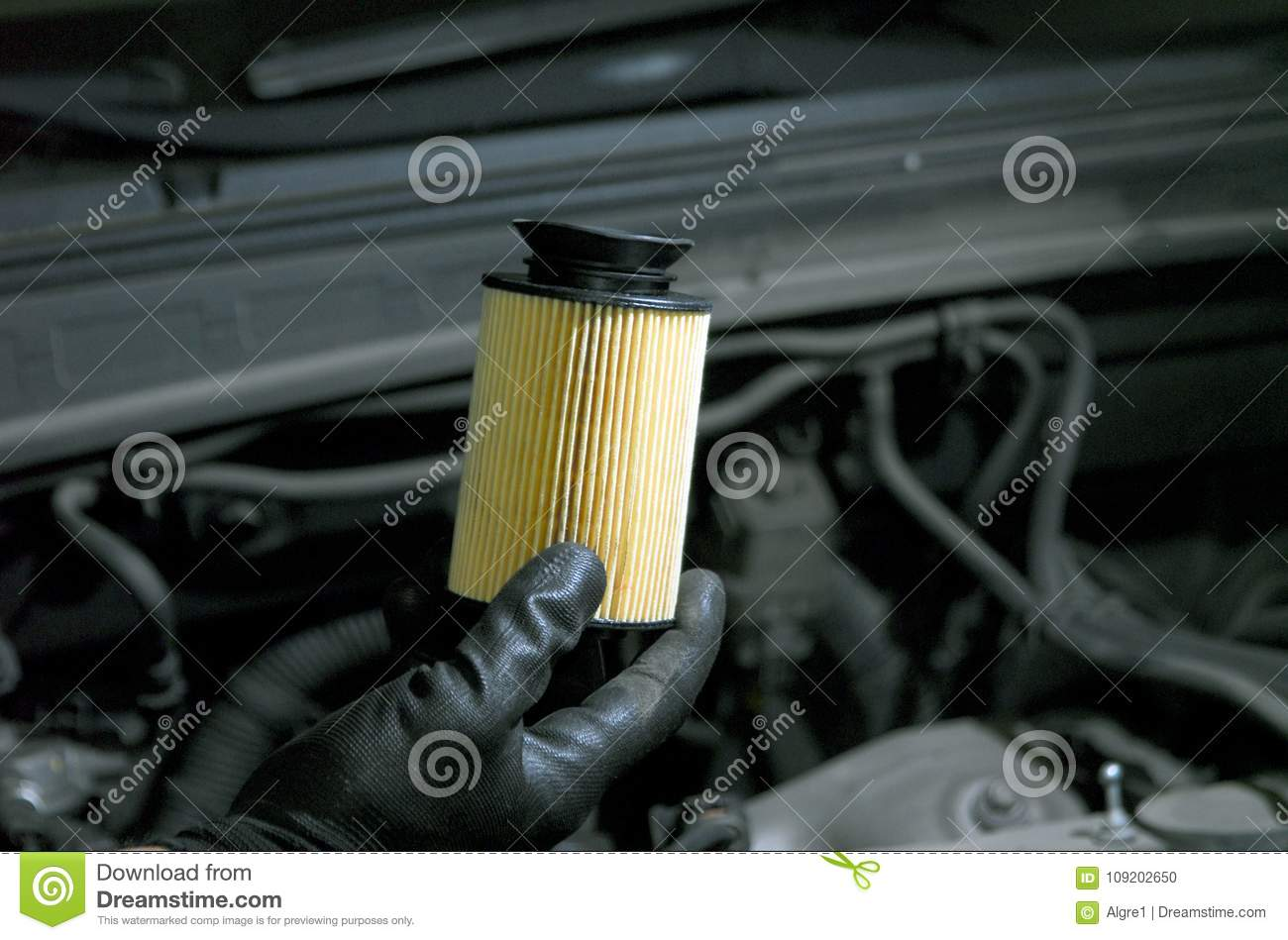 Replacement of oil filter stock photo. Image of service - 109202650