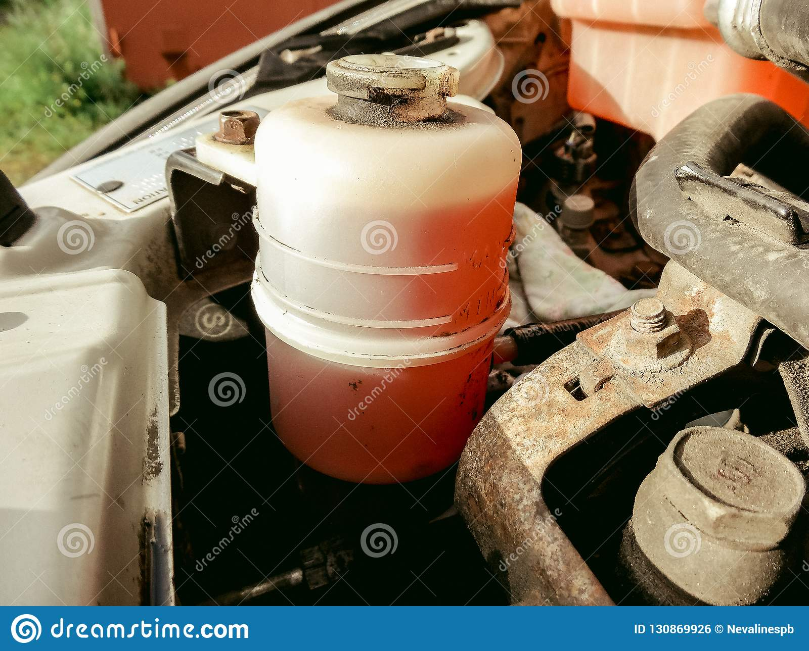 Replacing Vehicle Red Power Steering Fluid Stock Photo Image Of Garage Hand 130869926