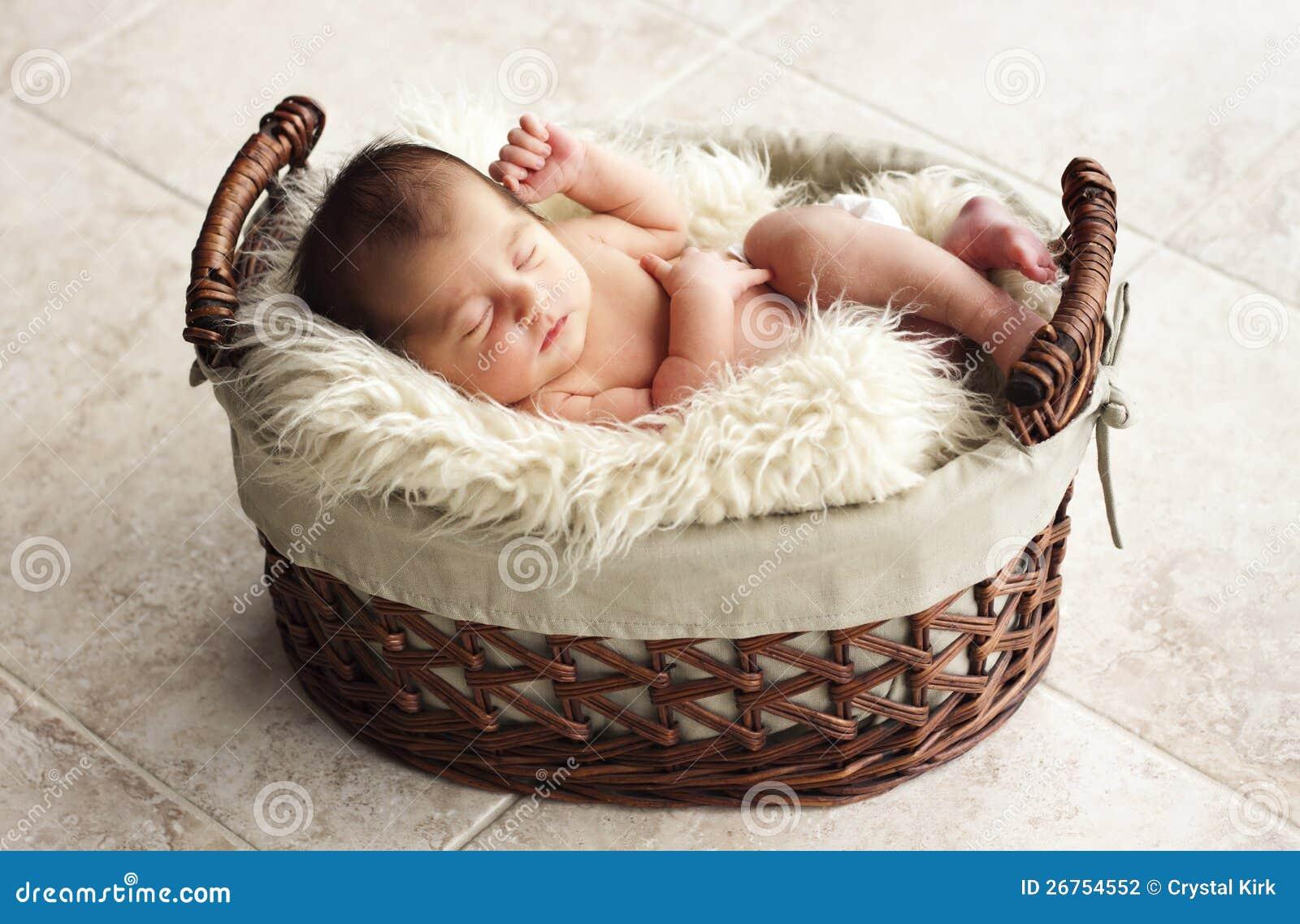 repos nouveau n dans la couverture de fourrure photographie stock image 26754552. Black Bedroom Furniture Sets. Home Design Ideas