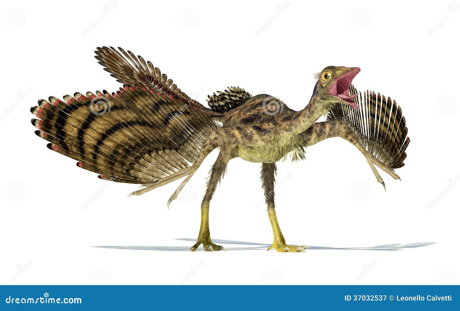 Representação Photorealistic de um dinossauro do Archaeopteryx.