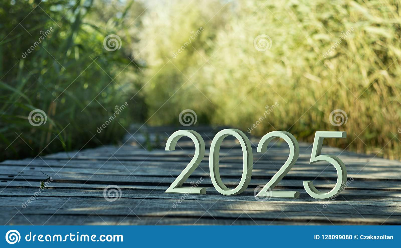 Representación 2025 3d