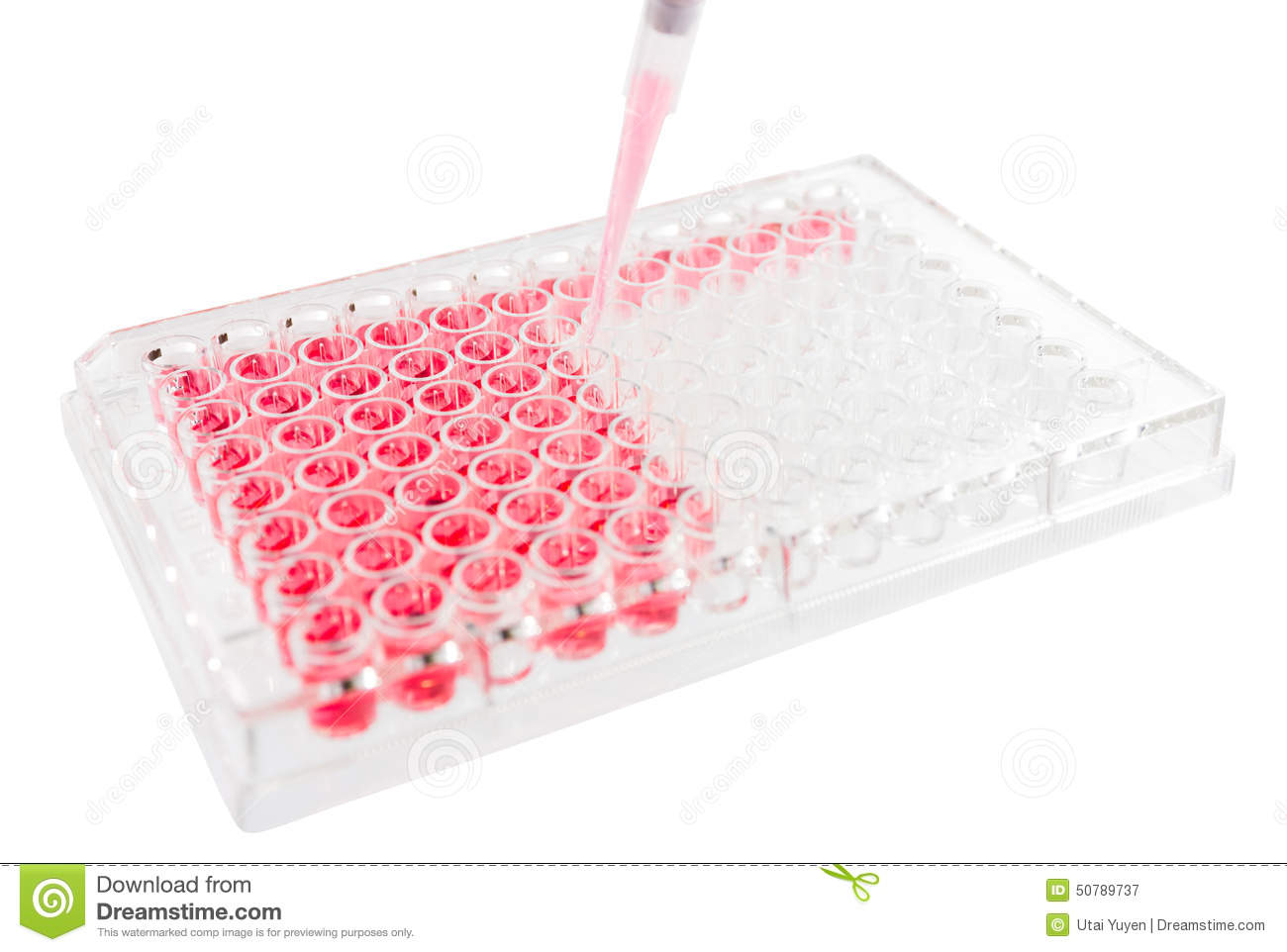 Research Test Lab Elisa Plat Stock Photo - Image: 50789737