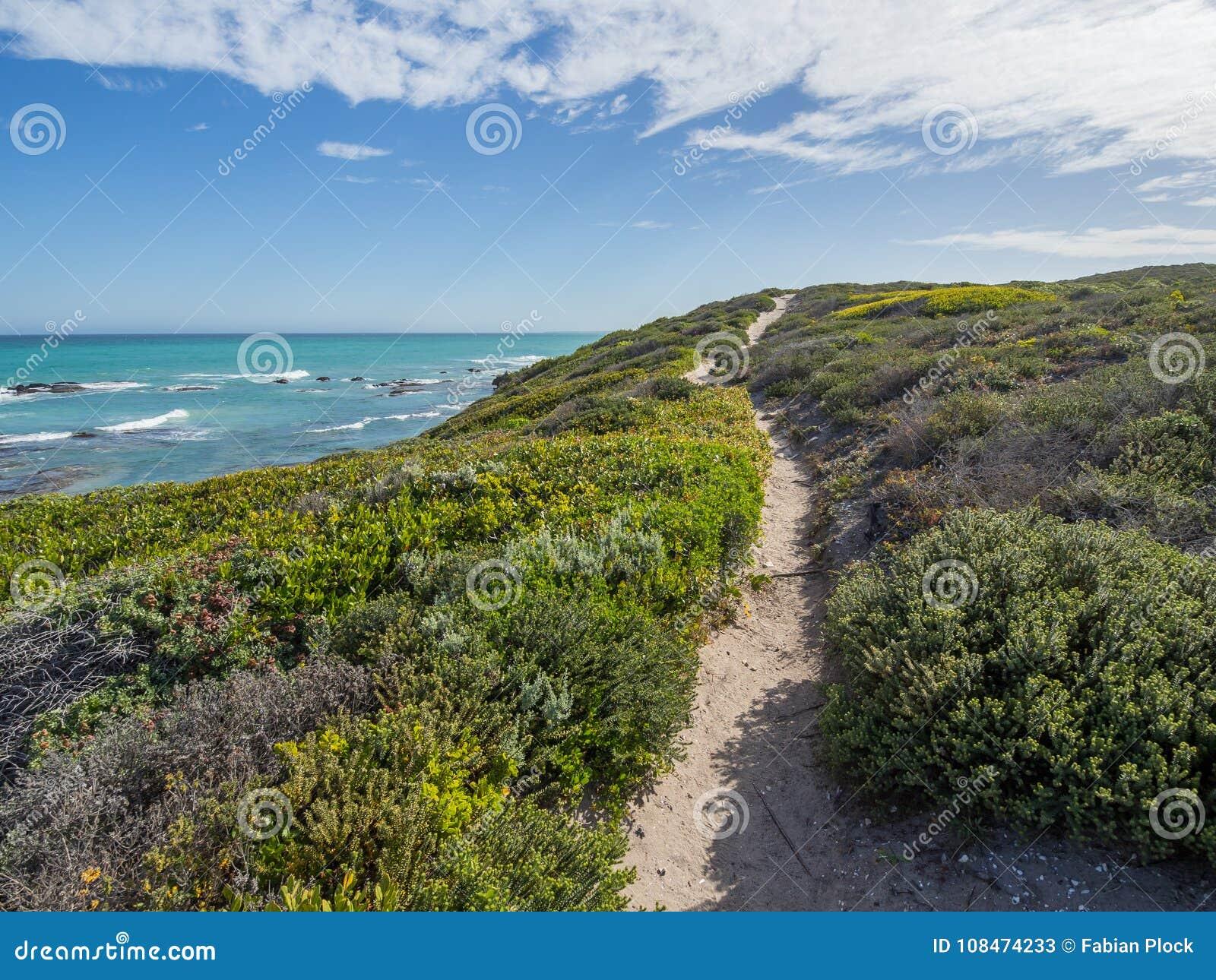 Reserva natural de De Aro - trajeto de passeio que conduz através das dunas de areia no oceano com vegetação litoral