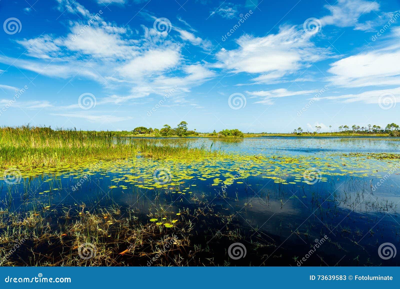 Reserva natural de la Florida