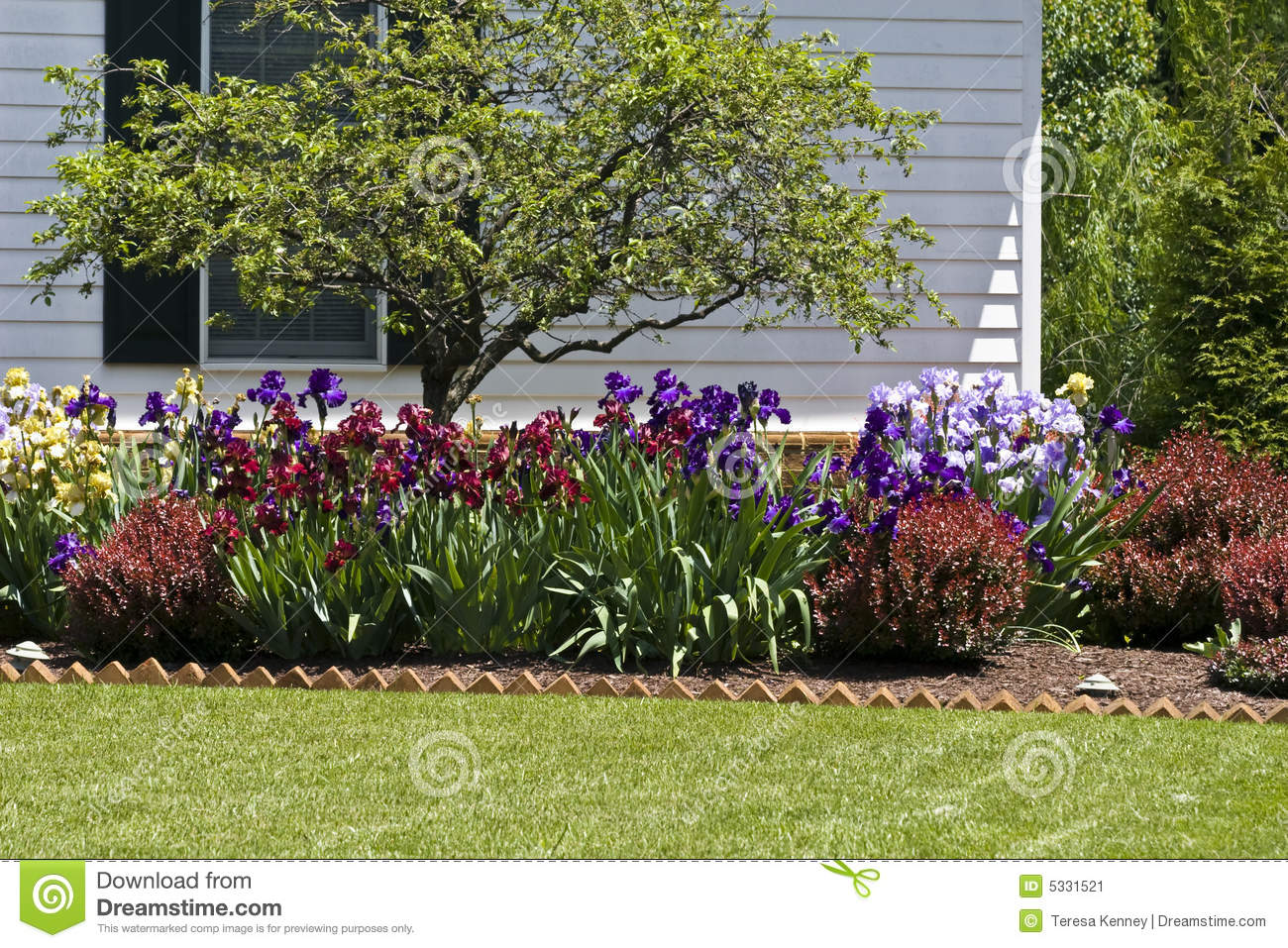 Residential Flower Garden Stock Image Of Colours