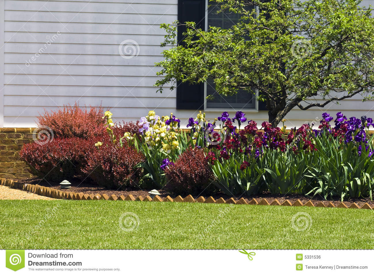 Residential Flower Garden Stock Photo Image Of Colorful