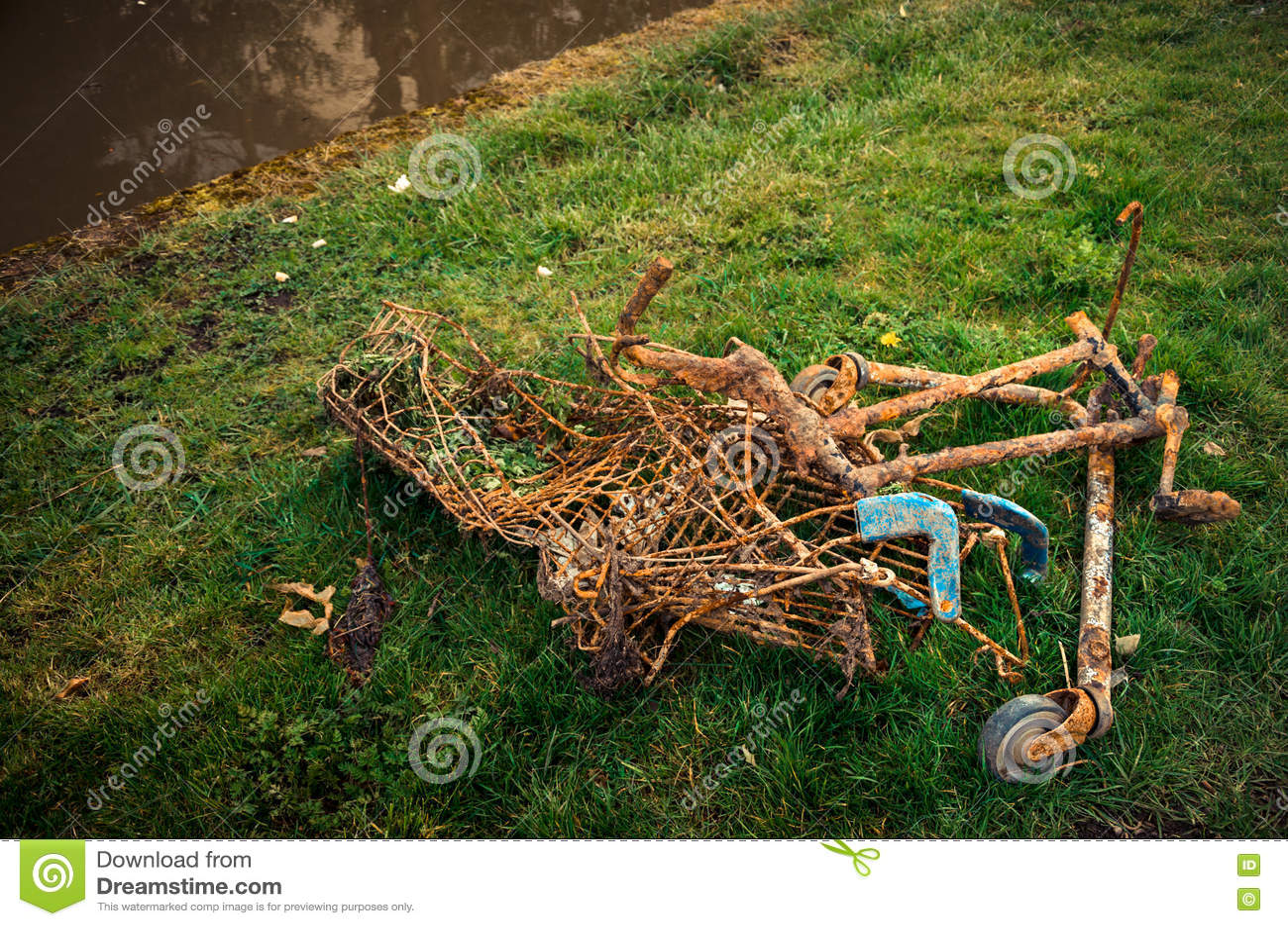 Responsabilidad ambiental - carro de la compra oxidado desechado del superstore