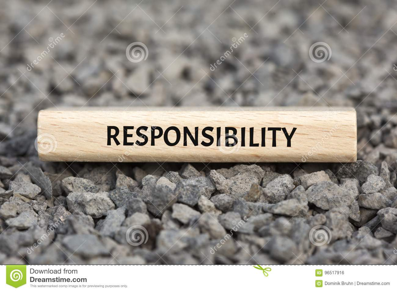 RESPONSIBILITY - EXEMPTION - Image With Words Associated ...