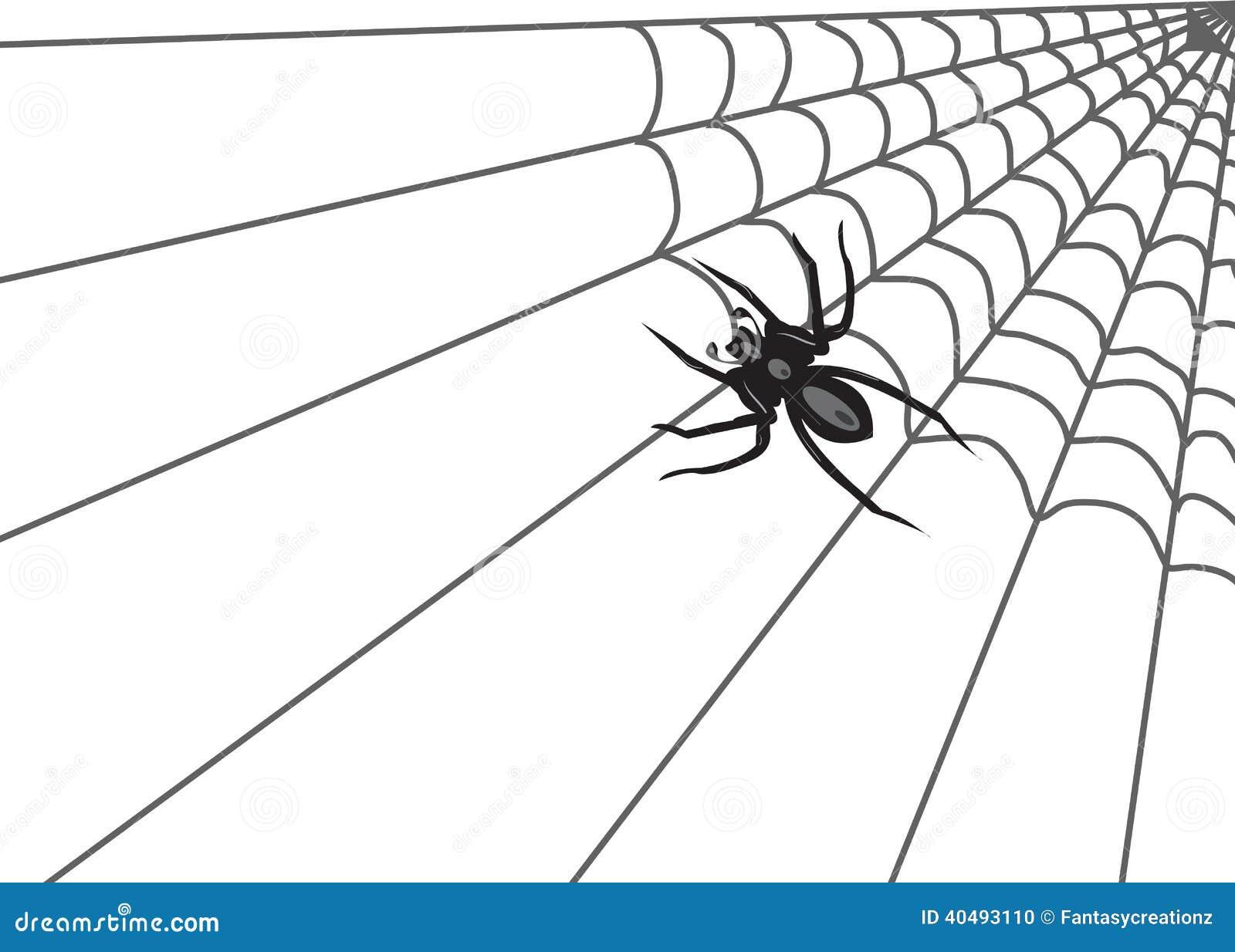 spider web stock vector