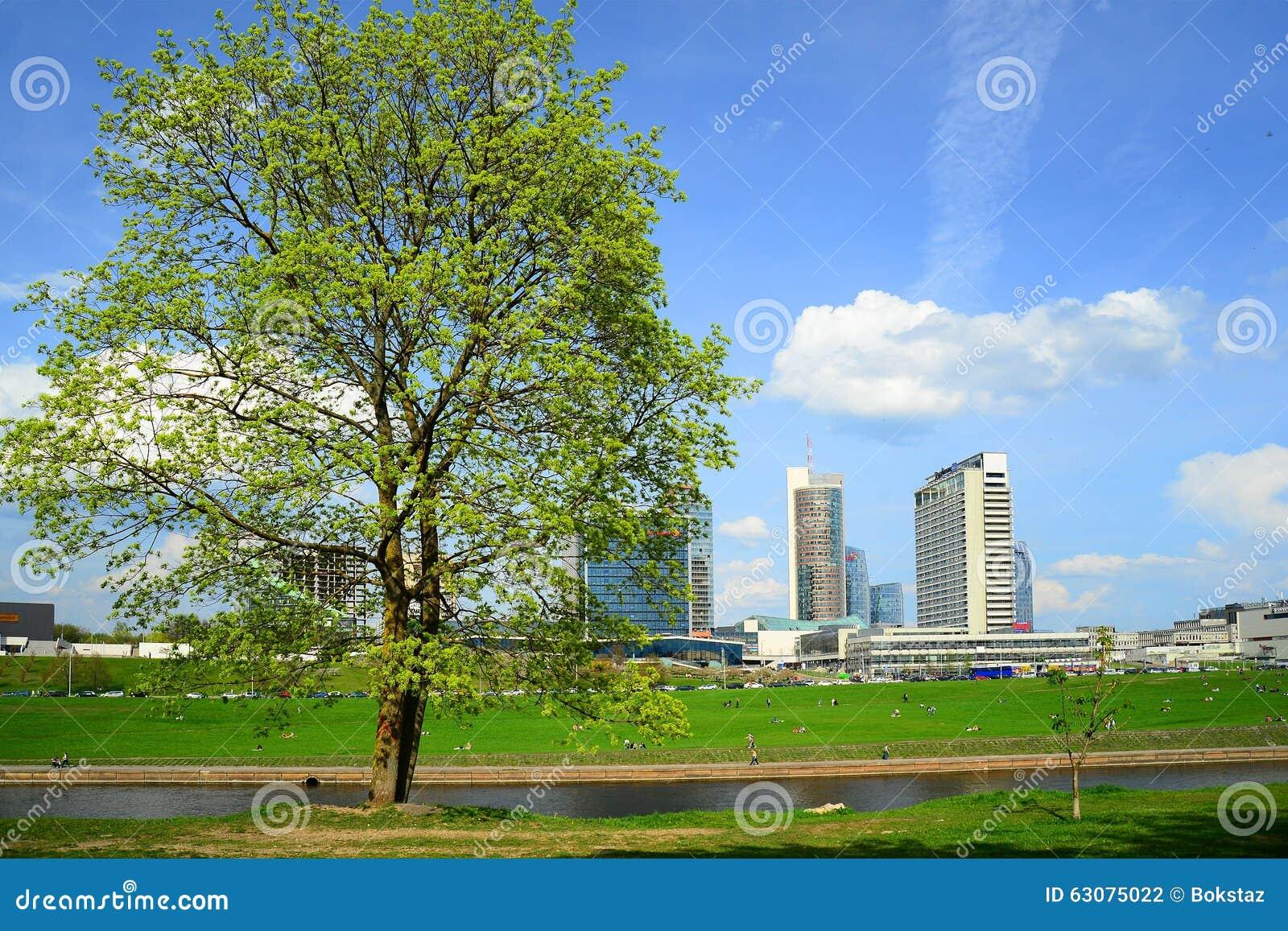 Download Ressort Au Centre De La Ville De Vilnius Le 28 Avril 2015 Photo stock - Image du centre, affaires: 63075022