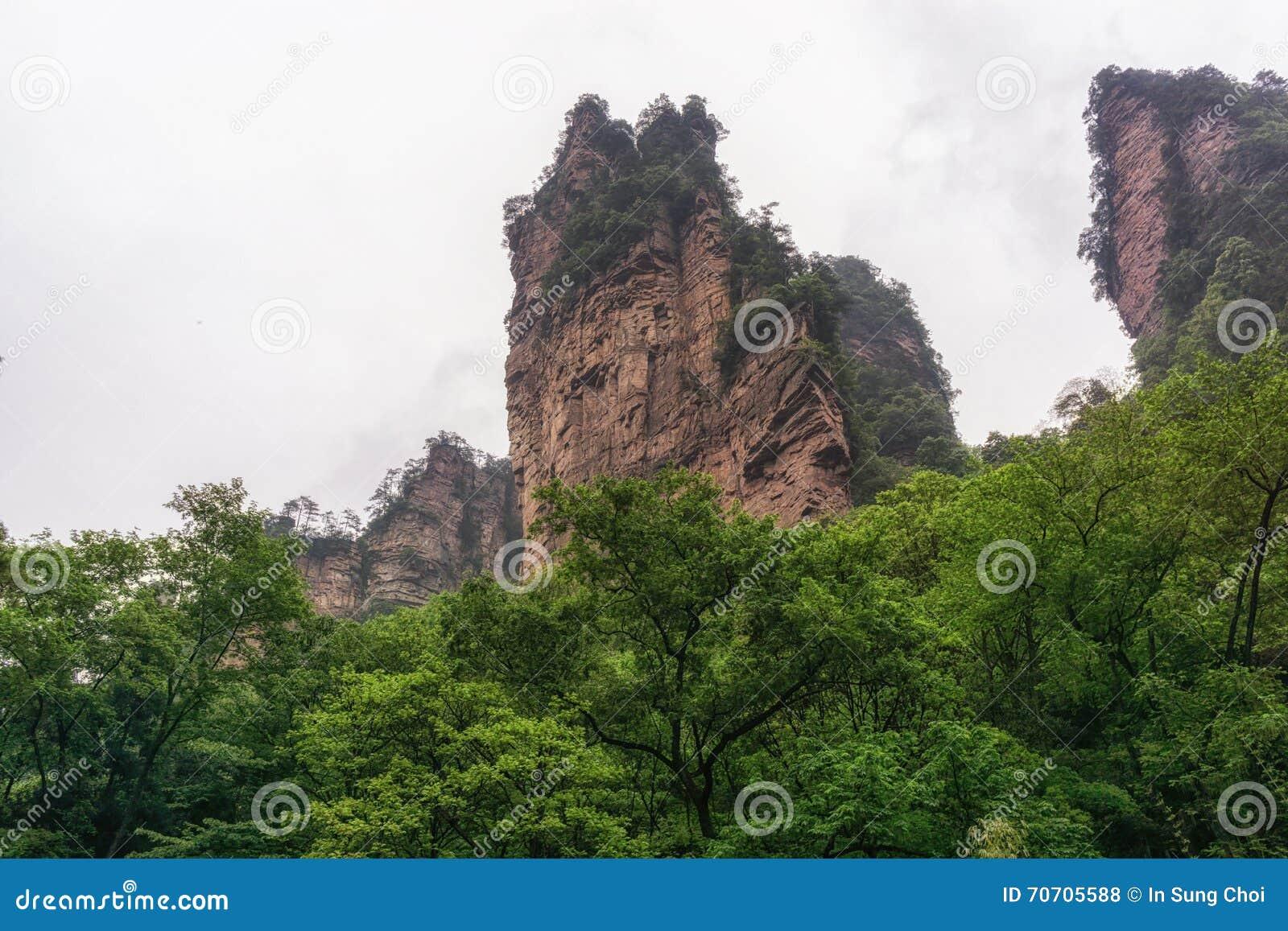 Ressortissant Forest Park de Yuanjiajie