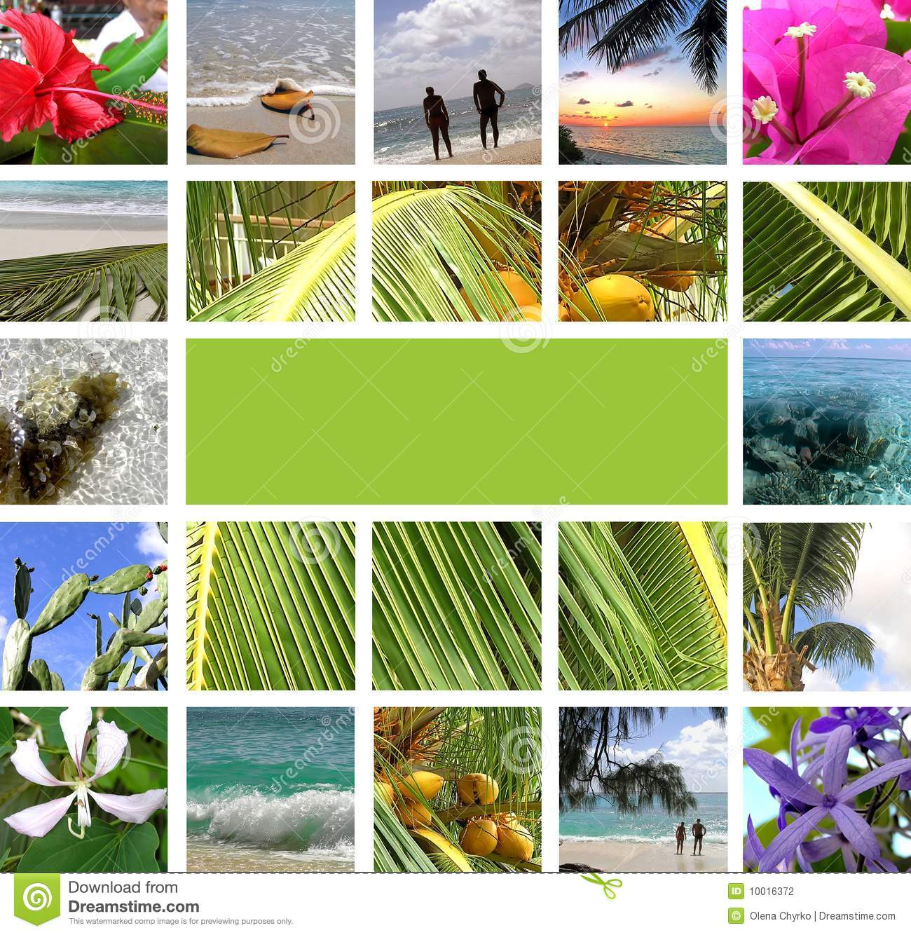 Rest In Tropics Collage Stock Photo Image Of Paradise