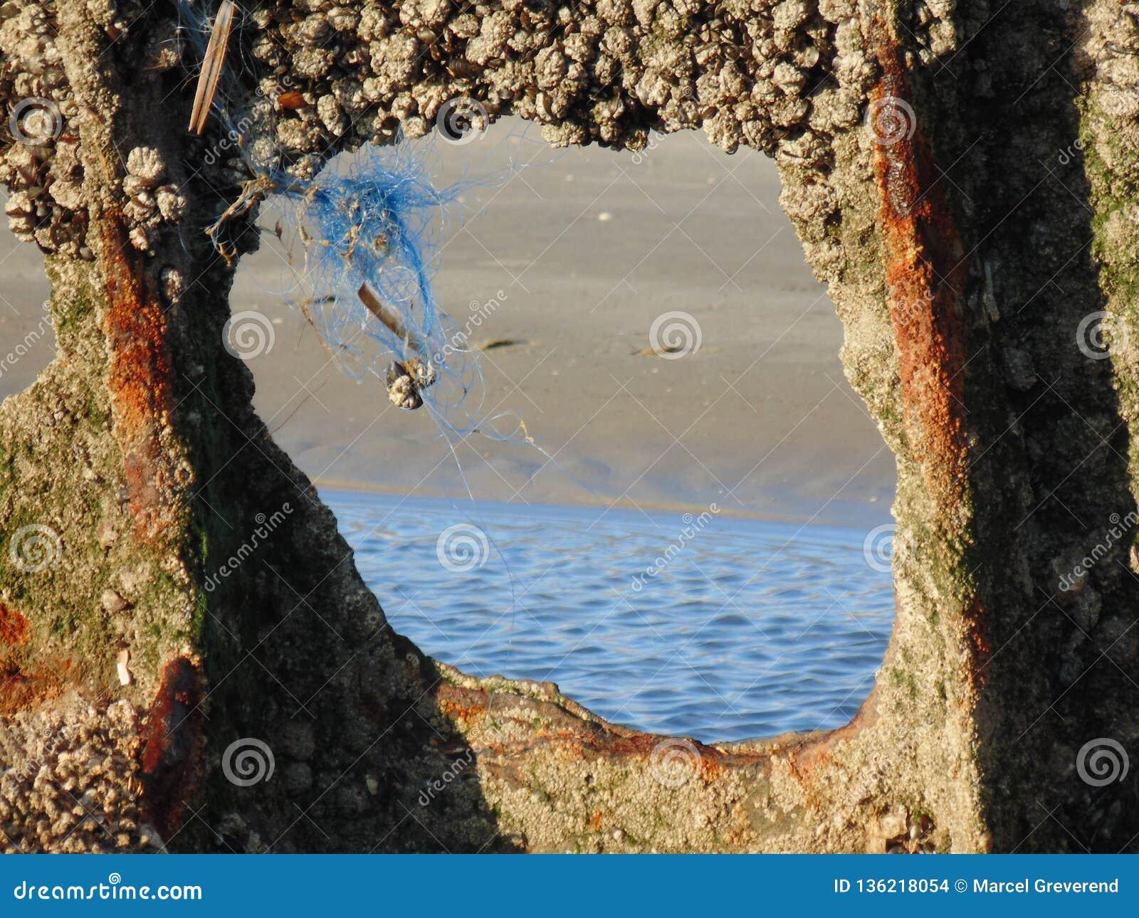 Restes d épave dispersés sur le sable 12
