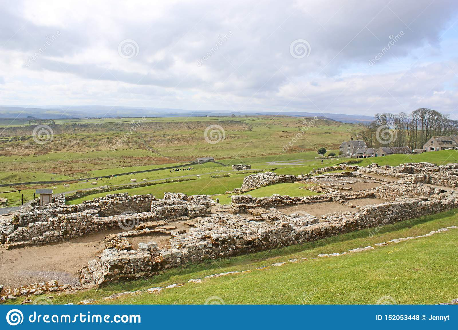 Restes romains chez Housesteads, le Northumberland