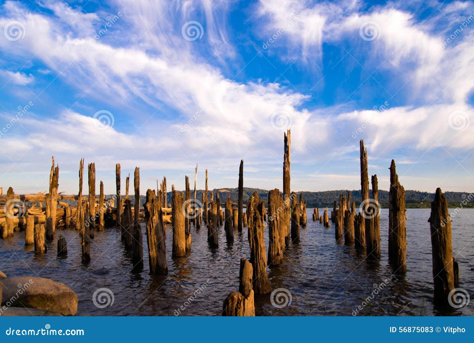 Resti di vecchio pilastro che attacca dall acqua dei pali marci del fiume