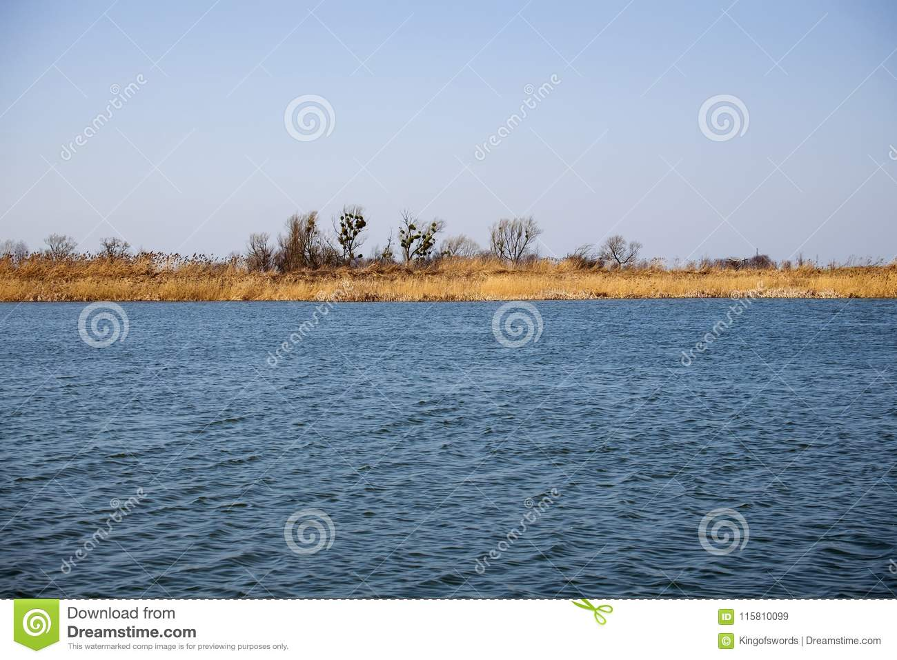 Restless water of the lake, the wind tends the dry yellowed grass to the ground and the bare trees