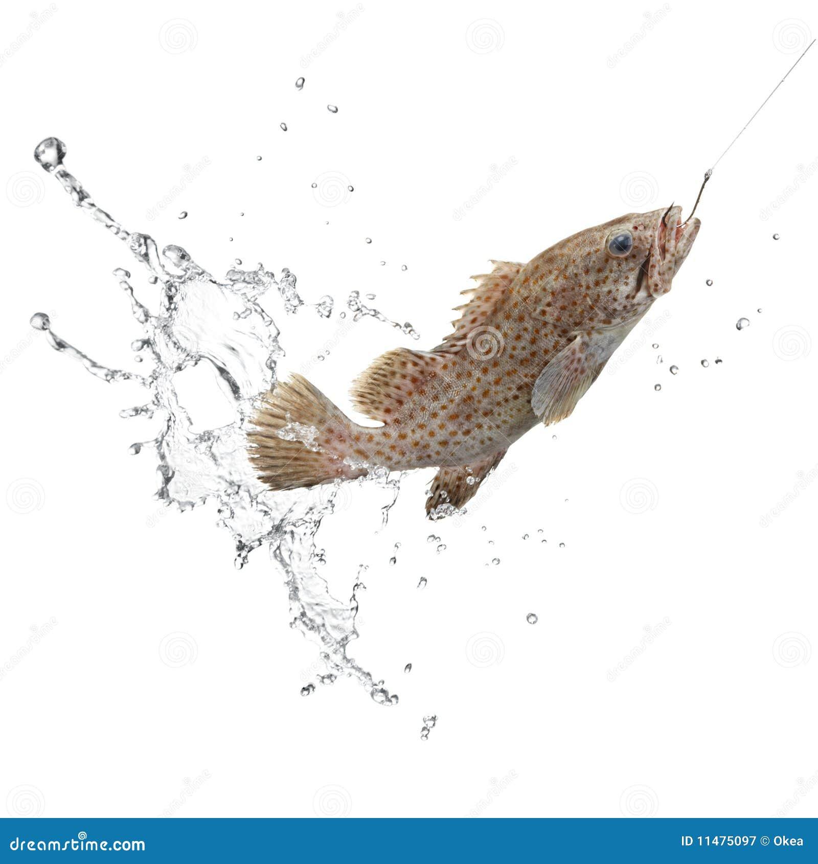 Retén de pescados