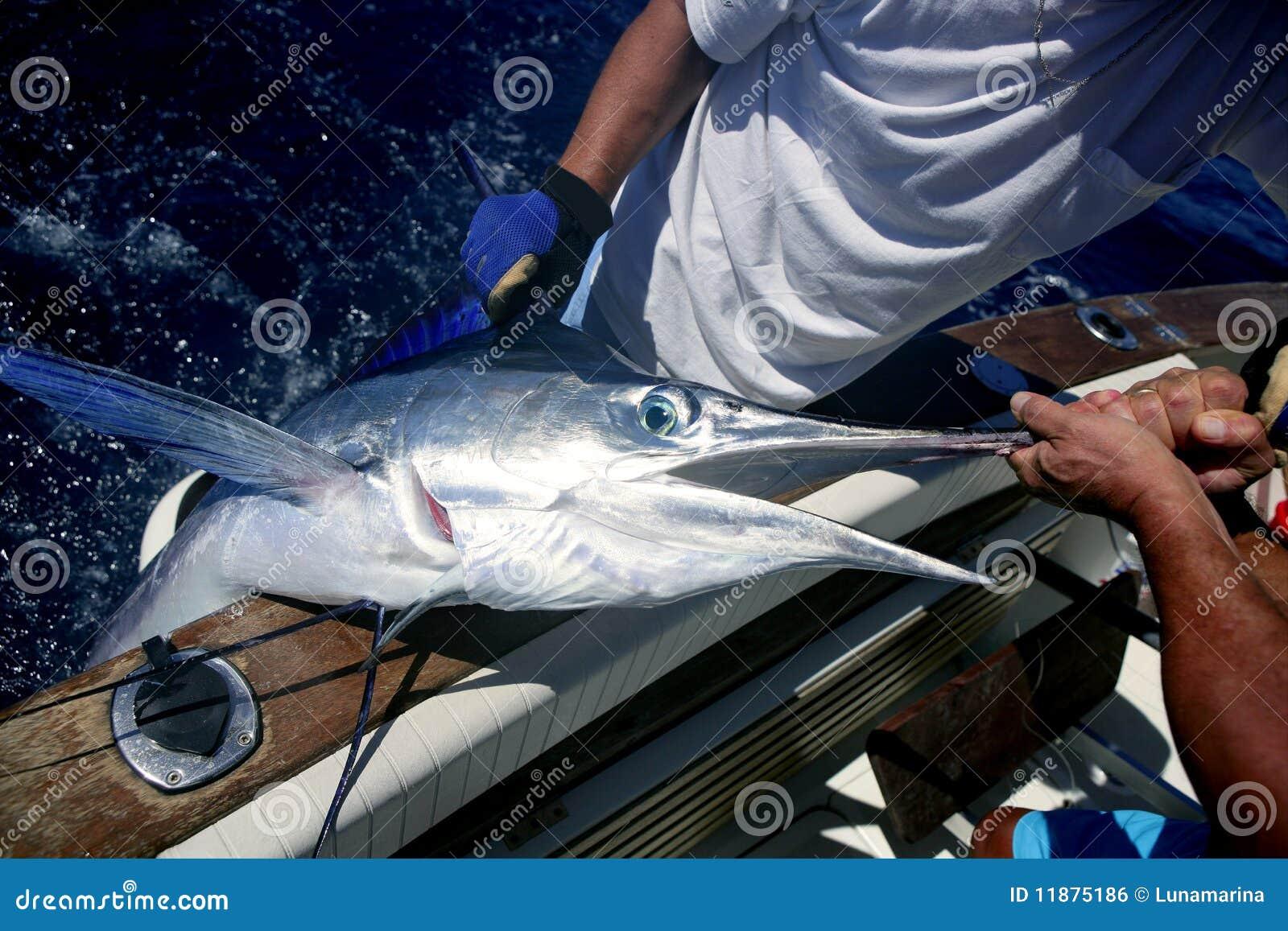 Retén y desbloquear del marlin blanco de la paparda en el barco