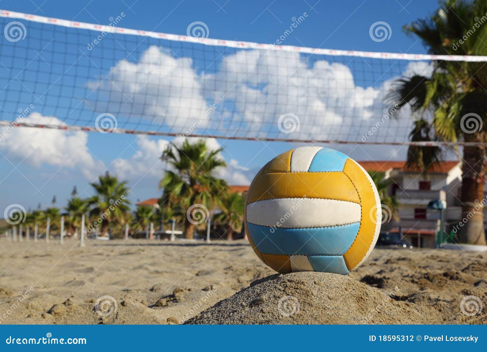 Rete di pallavolo, pallavolo sulla spiaggia e palme
