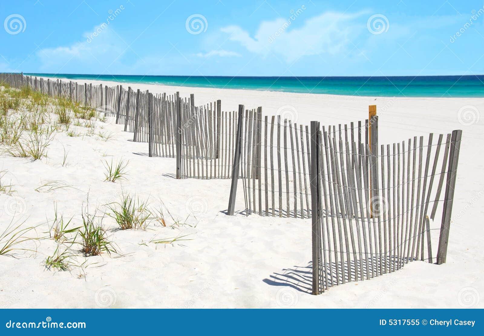 Download Rete Fissa Della Duna Di Sabbia Sulla Spiaggia Graziosa Immagine Stock - Immagine di alone, litorale: 5317555