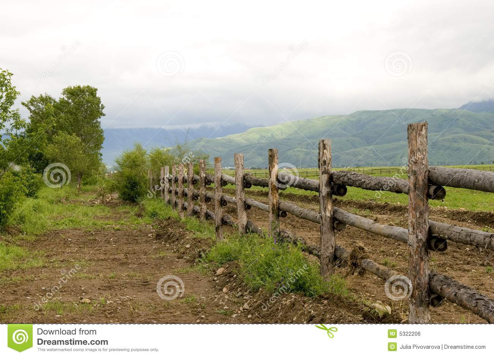 Download Rete Fissa Verde Di Legno E Del Pascolo In Mattina Di Estate Fotografia Stock - Immagine di agricoltura, acreage: 5322206