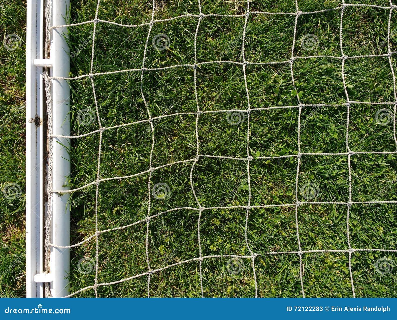 Reticolato bianco contro l erba verde