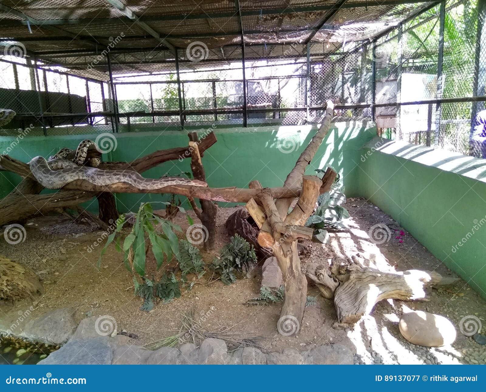 katraj zoo images