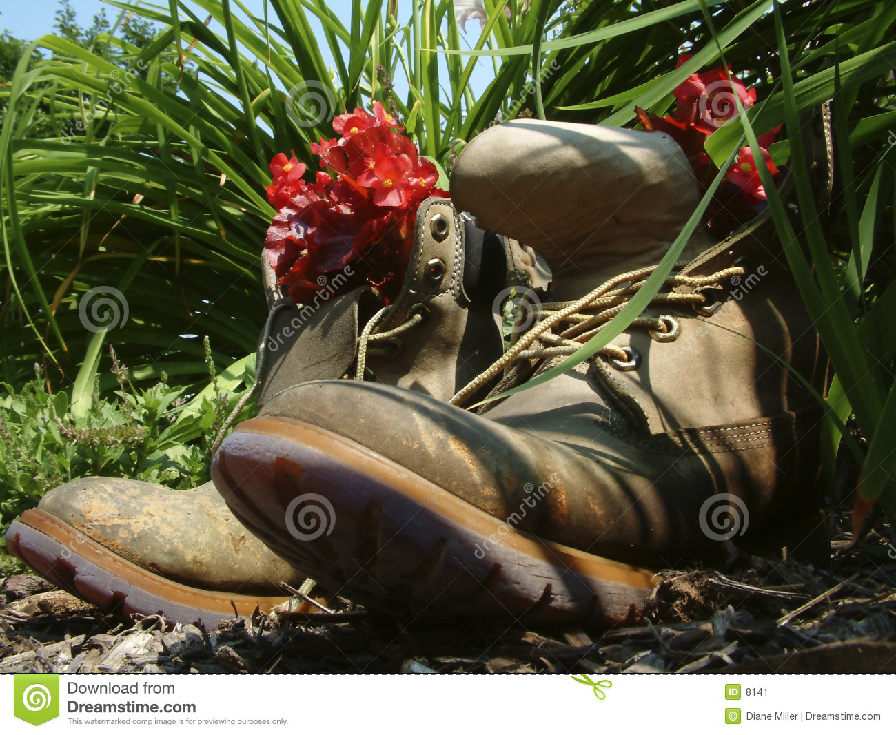 Retired boots