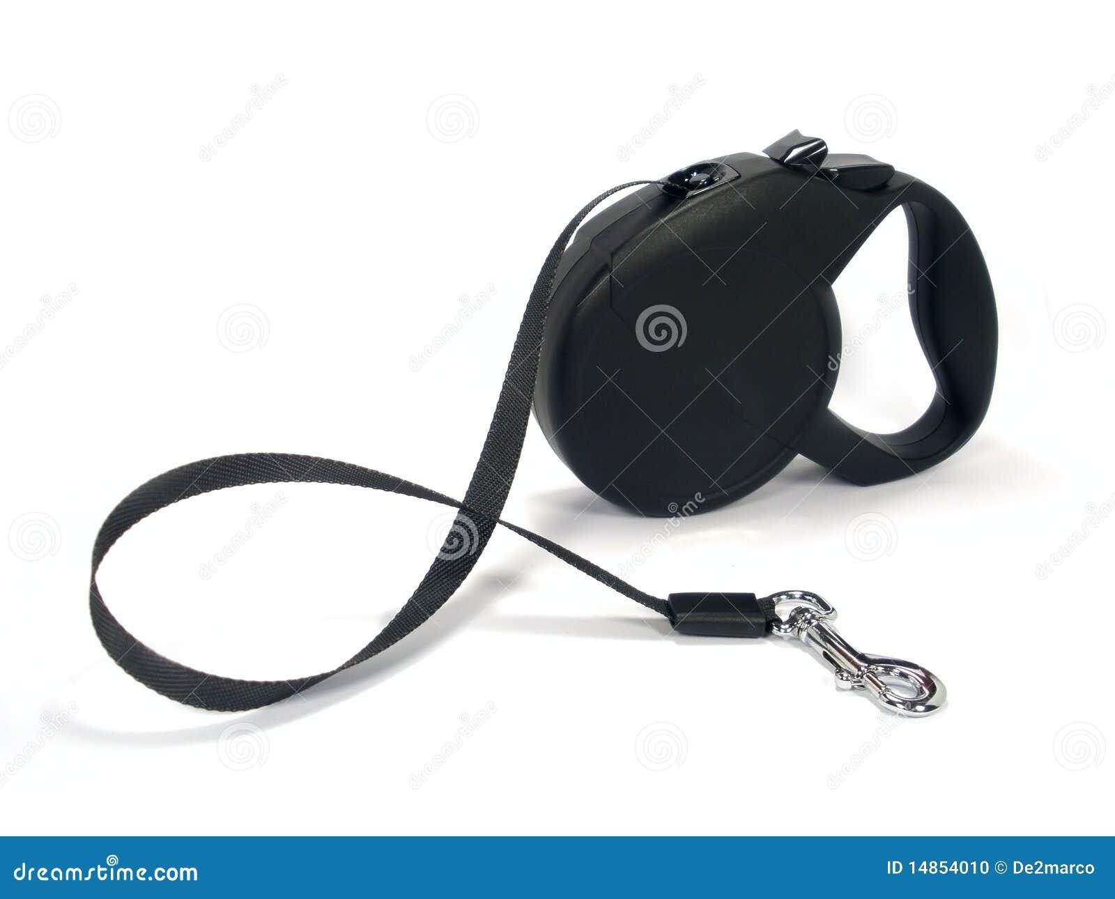 Retractable tape leash