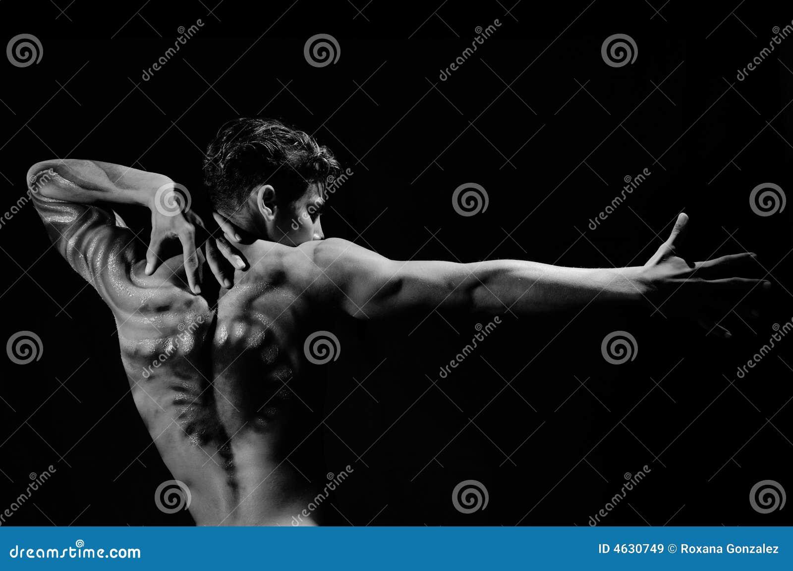 Retrato artístico do macho novo