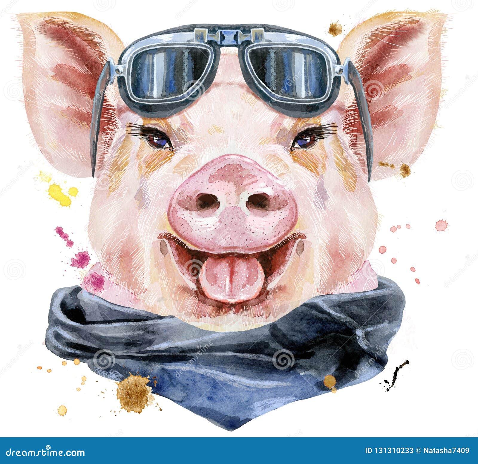 Retrato de la acuarela del cerdo con las gafas de sol del motorista