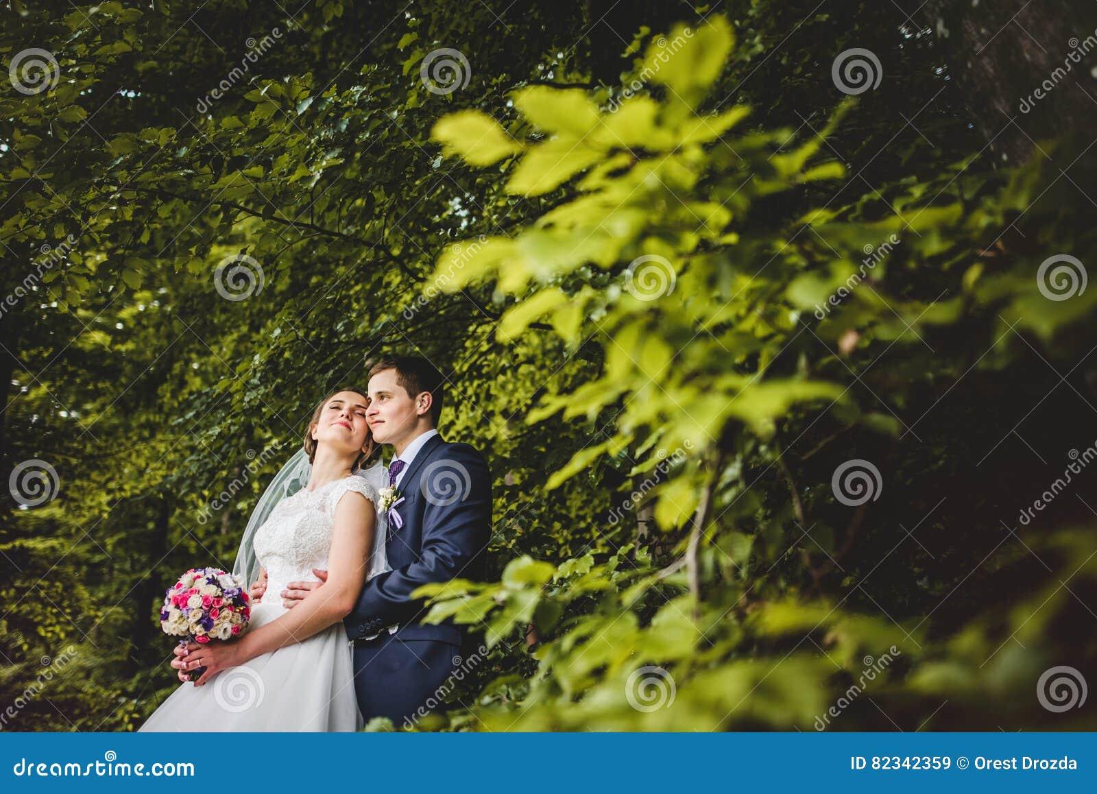 Retrato de la novia y del novio en el bosque