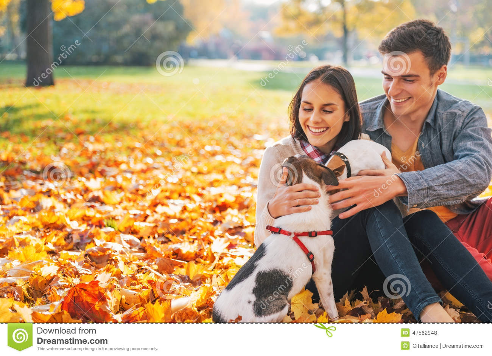 Retrato de los pares jovenes felices que se sientan al aire libre en parque del otoño