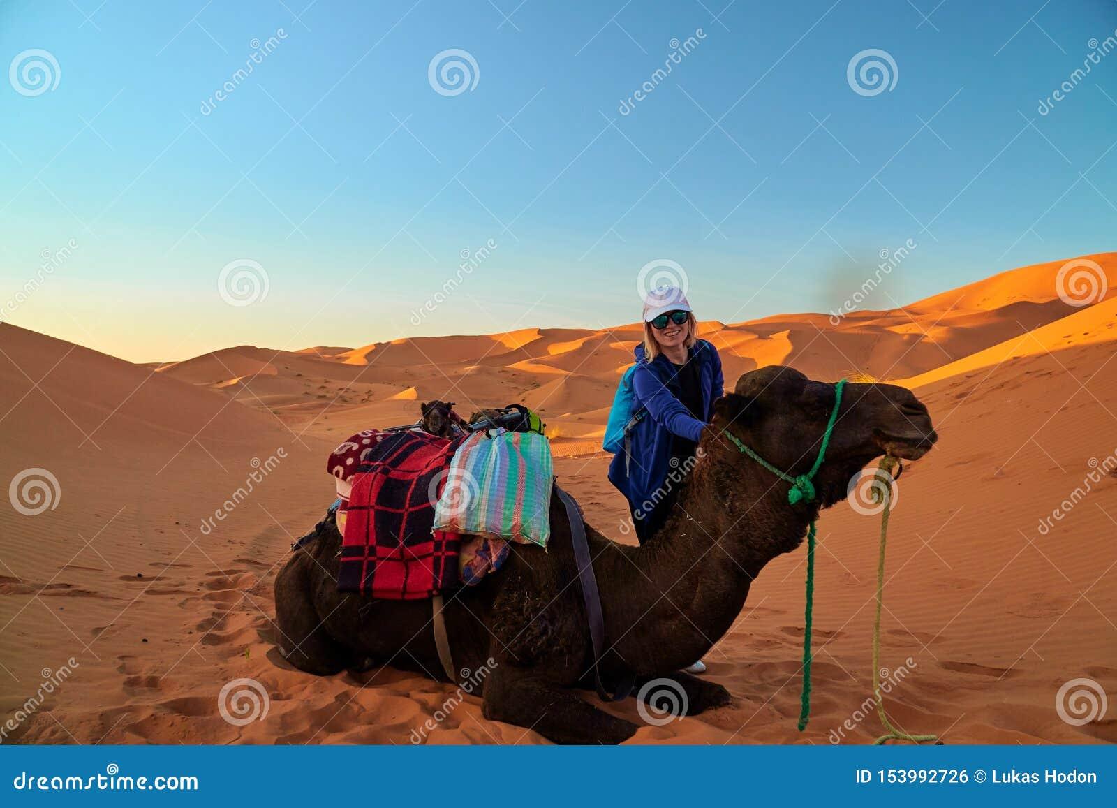 Retrato de uma menina do turista e de um camelo no deserto de Sahara