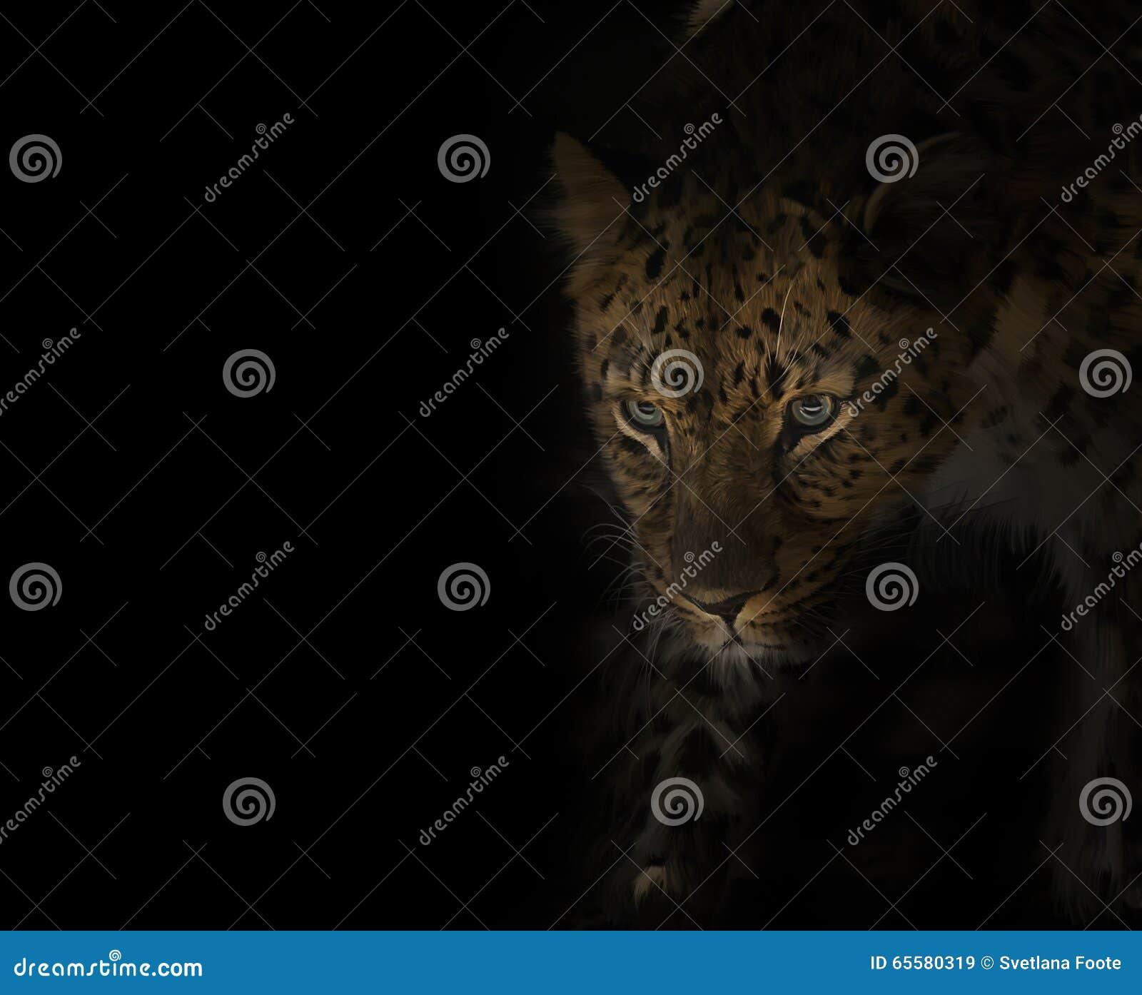 Retrato do leopardo no preto