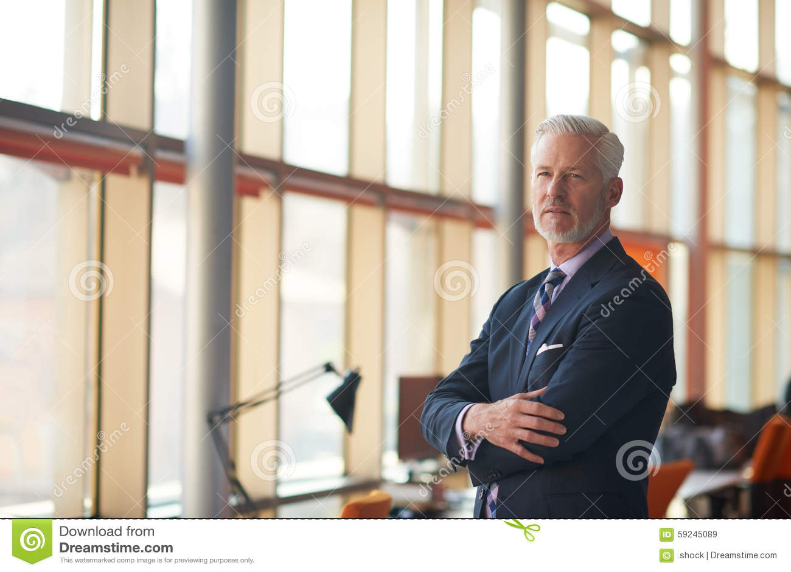 Download Retrato Mayor Del Hombre De Negocios Imagen de archivo - Imagen de negocios, copia: 59245089