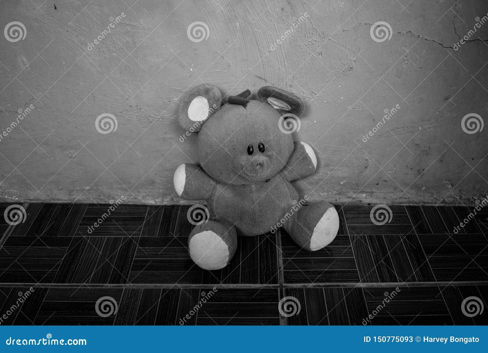 Retrato preto e branco de Toy Teddy Bear macio isolado