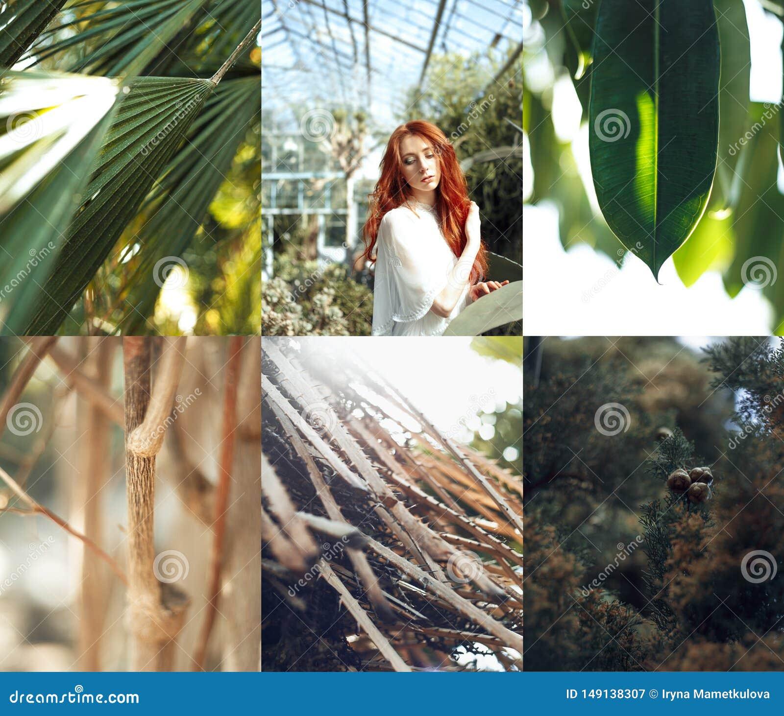 Retrato rojo de la muchacha del pelo con collage tropical de las plantas