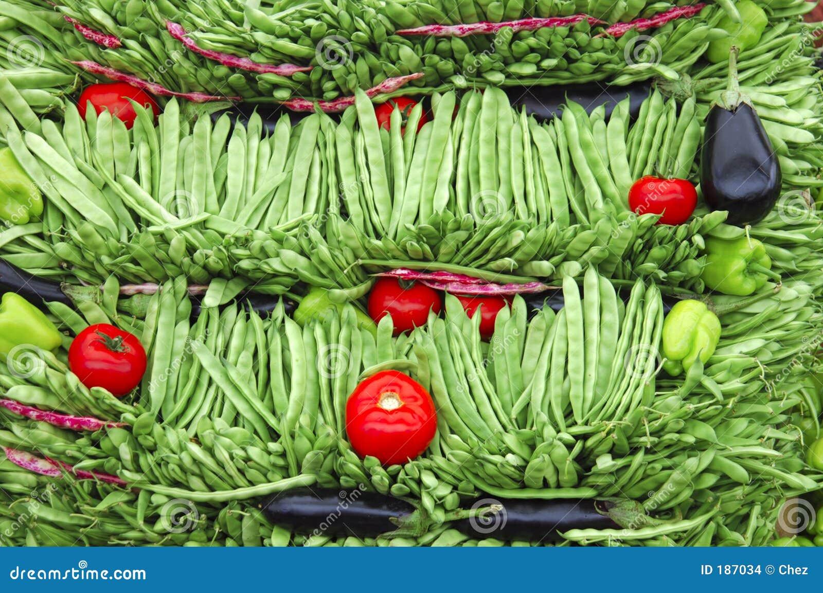 Retrato vegetal