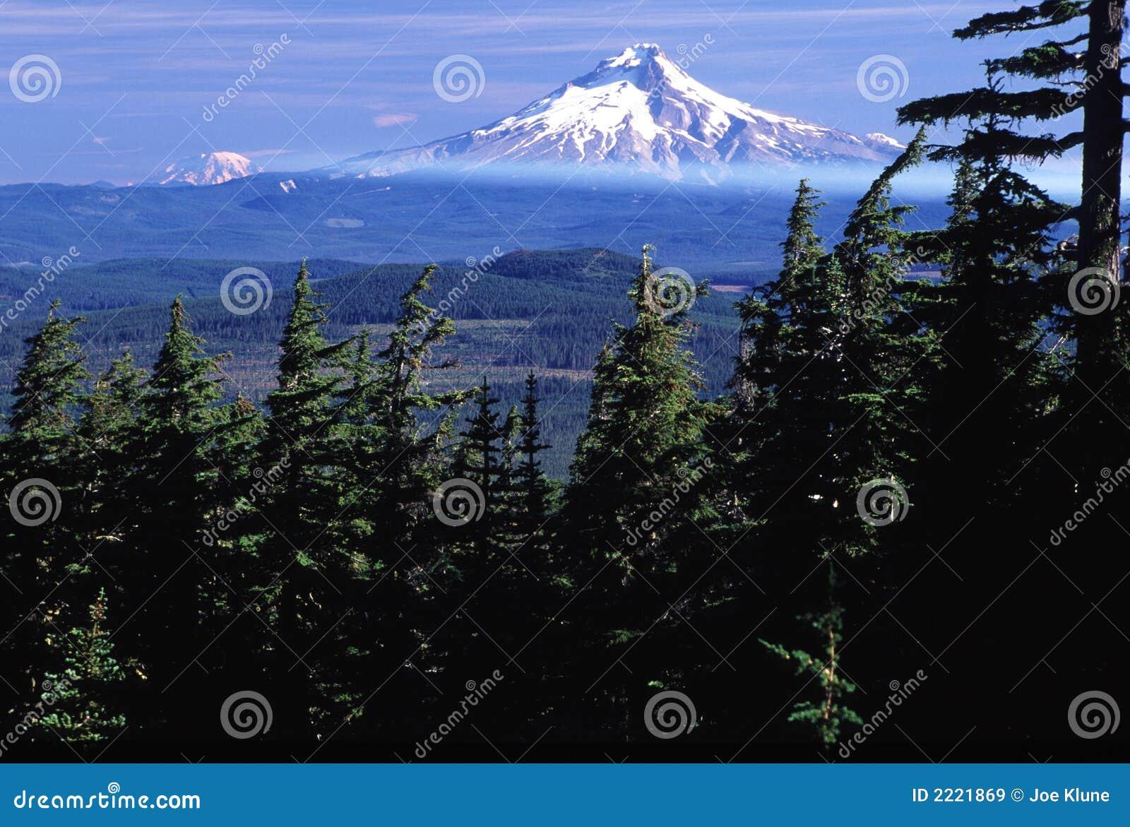 Retratos de Oregon